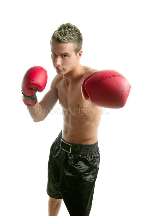 Free Young Boxer Man Isolated On Studio Royalty Free Stock Image - 8712666
