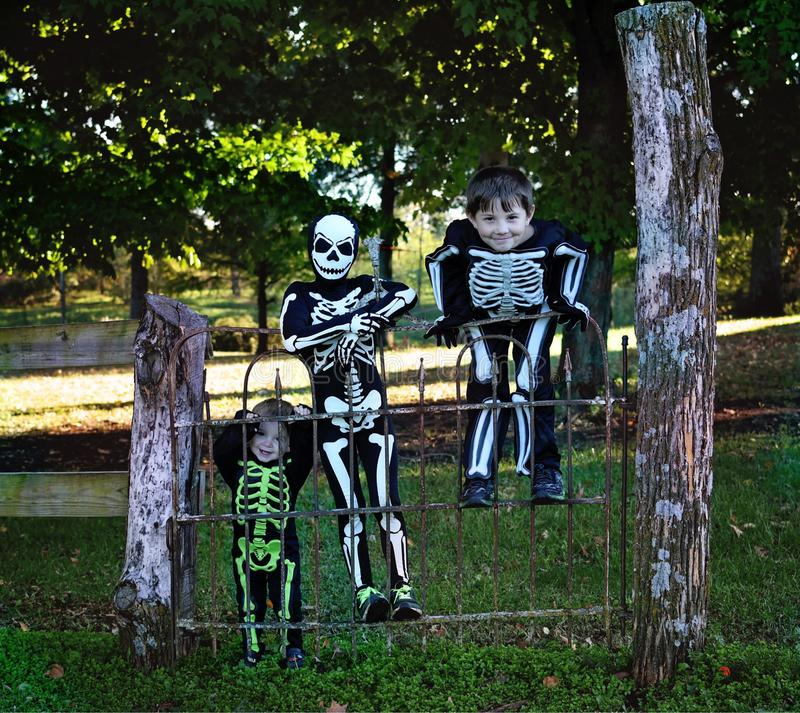 Three little boys dressed as skeletons royalty free stock photos