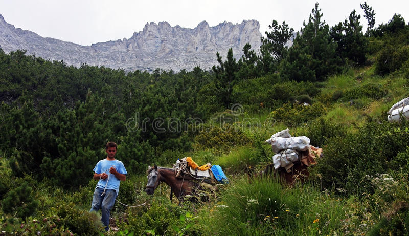 Young boy carrying garbage off the Mount Olympus with his horses. A young boy conducts his horses off the mount Olympus while carrying the garbage royalty free stock image