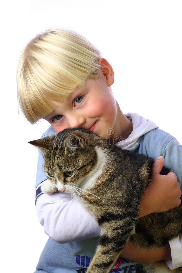 Download Young boy with cat stock image. Image of blond, kitten - 247561