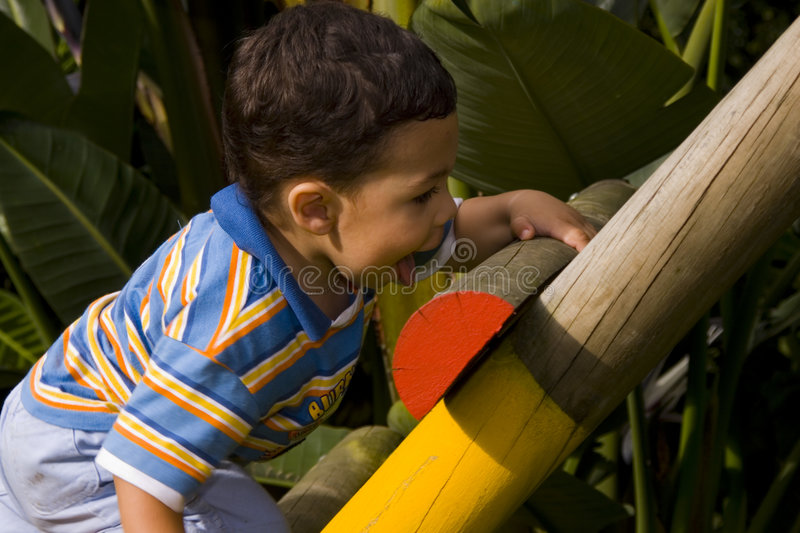 Young boy climbing royalty free stock image