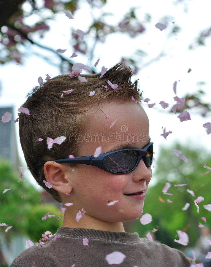 Young boy covered by blossom stock image