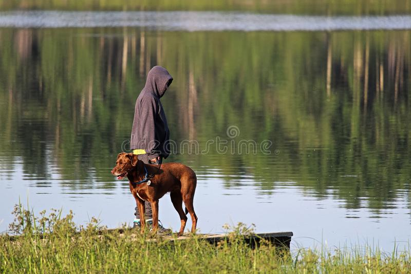 A young boy on a dock with his dog.  stock photography