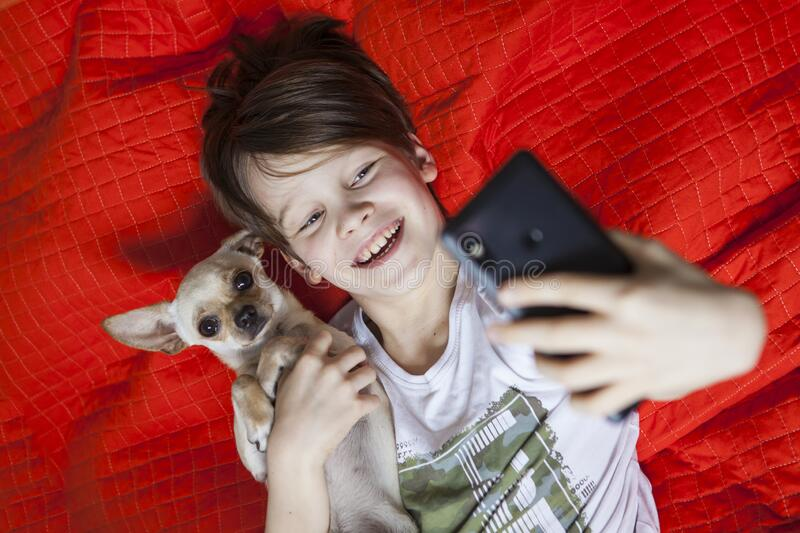 A young boy with a dog in a interior. royalty free stock images