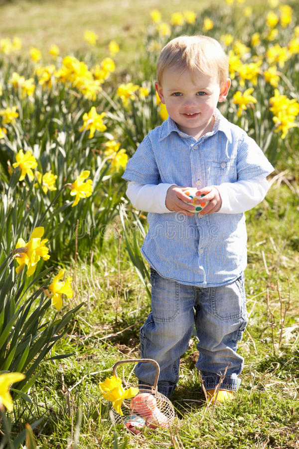 Young Boy On Easter Egg Hunt In Daffodil Field stock image