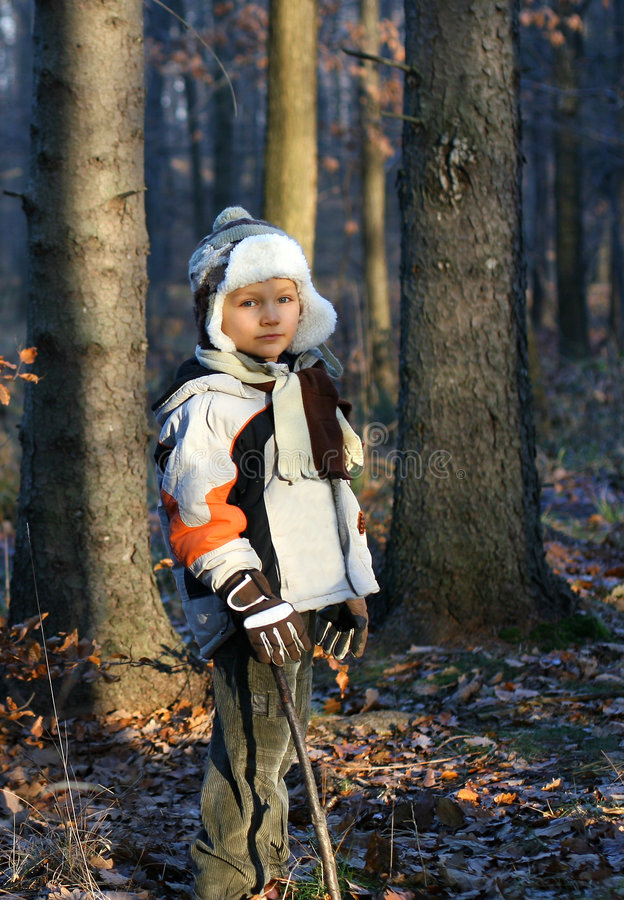 Download Young Boy in a Forest stock photo. Image of male, dressed - 1705114