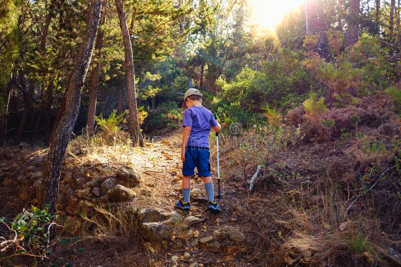 Young boy on his back walks through the forest exercising to relax and explore nature stock photography