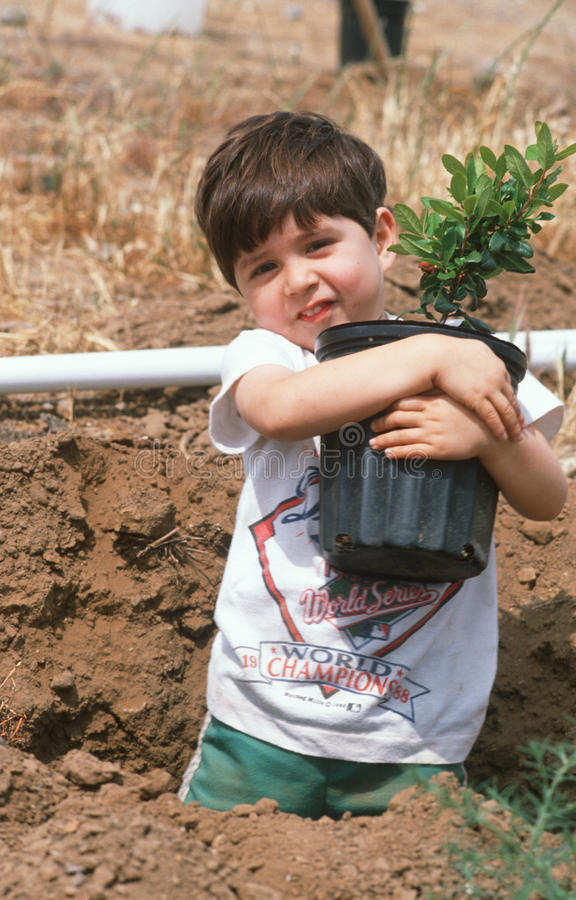 Young boy holding tree for planting stock photography