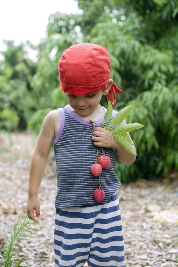 Download Young boy and lychee stock photo. Image of health, beautiful - 5984016