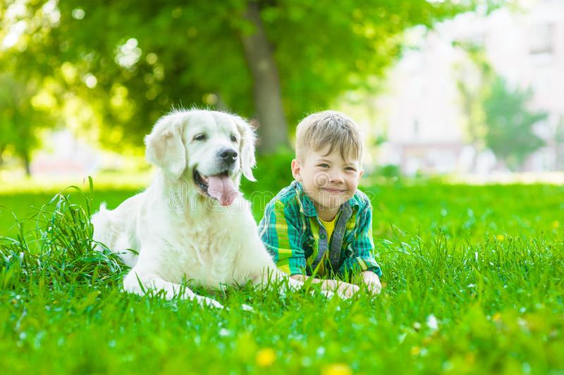 Young boy lying with golden retriever dog on green grass stock images
