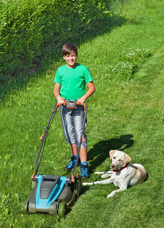 Young boy mowing the lawn accompanied by his labrador doggie stock image