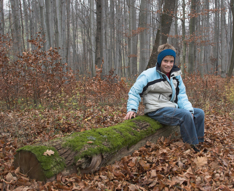 Young boy on old log in forest stock images