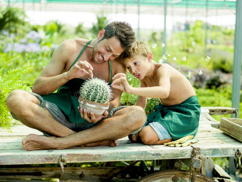 Young boy playing with his father in a greenhouse royalty free stock image