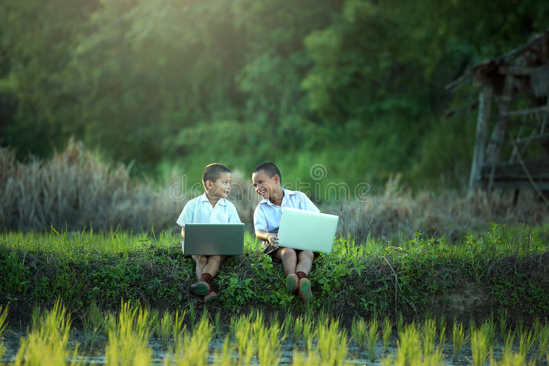 Young boy playing laptop royalty free stock images
