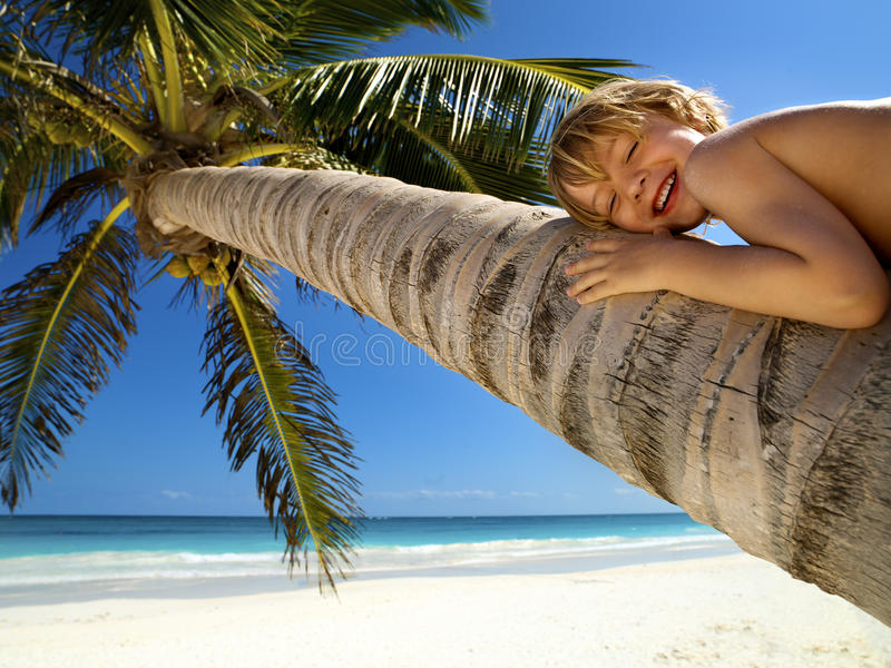 Young boy relaxes on a palm tree royalty free stock photos