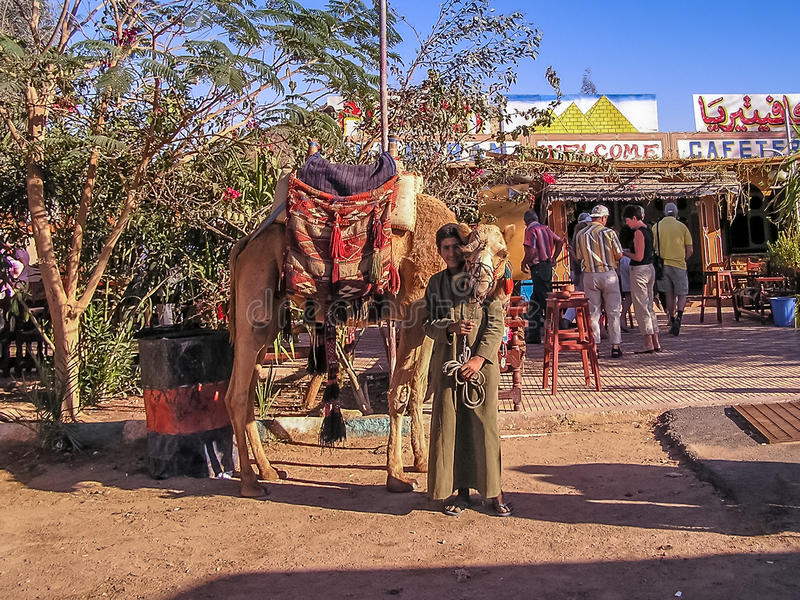 Young boy renting camels to tourist stock photos