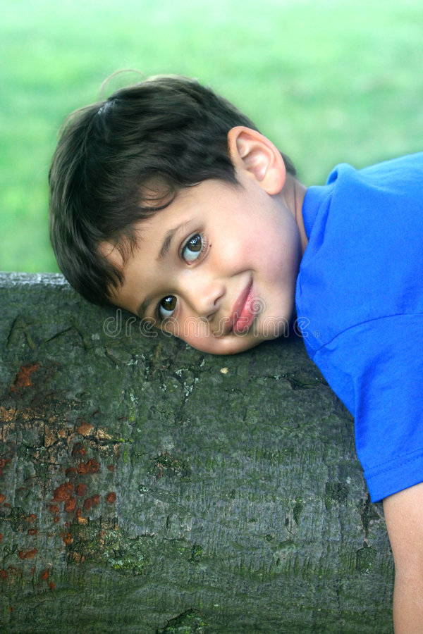 A young boy resting on a big tree branch stock image