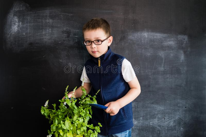 Young boy`s standing with plant in pot in his hands near blackboard. Young gardener. Creative design concept for 2019 calendar. Young boy`s standing with plant stock photography
