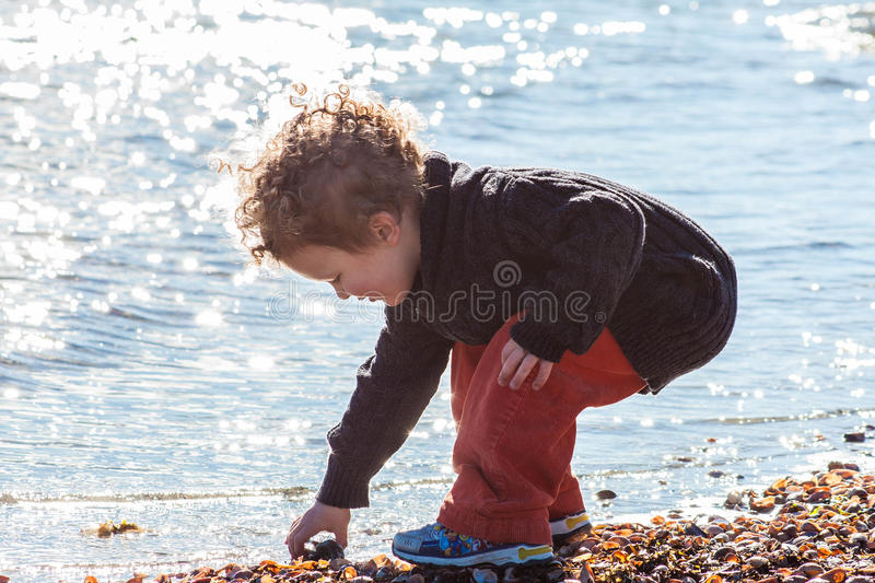 Young Boy Searching for Shells at Beach stock image