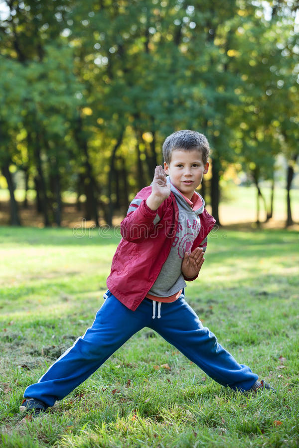 Young boy showing karate techniques in autumn park. Young Caucasian boy showing karate techniques in autumn park royalty free stock photos