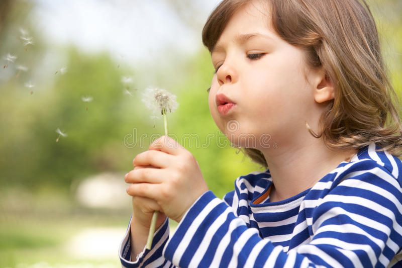 Young Boy Sitting In Field Blowing Dandelion royalty free stock images