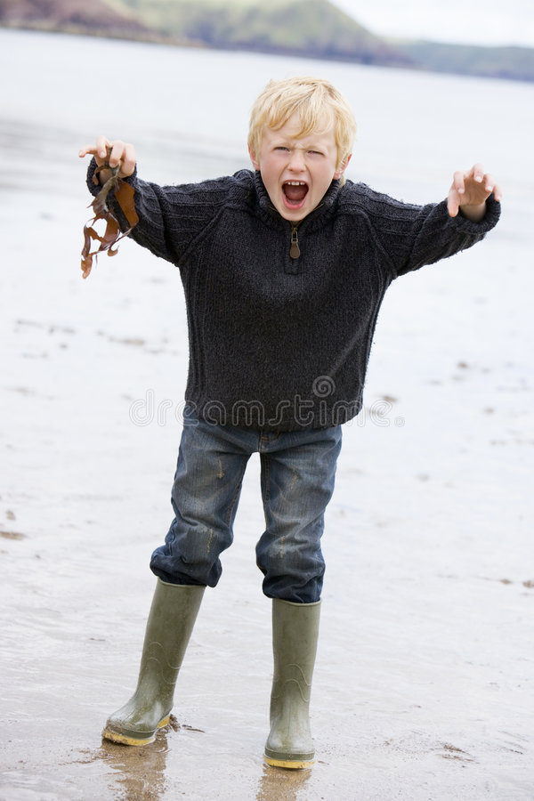 Young boy standing on beach holding leaves smiling royalty free stock photos