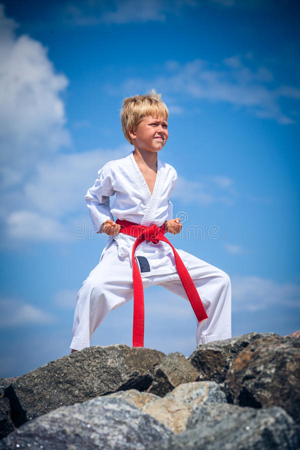 Young boy training karate royalty free stock image