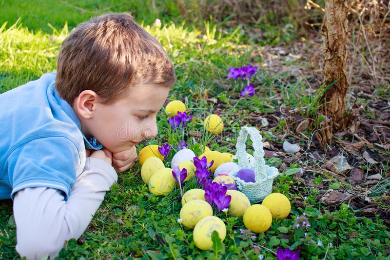 Spring Easter background with colored eggs, crocus flowers, basket in the garden.Spring Easter Eggs Hunt background royalty free stock images