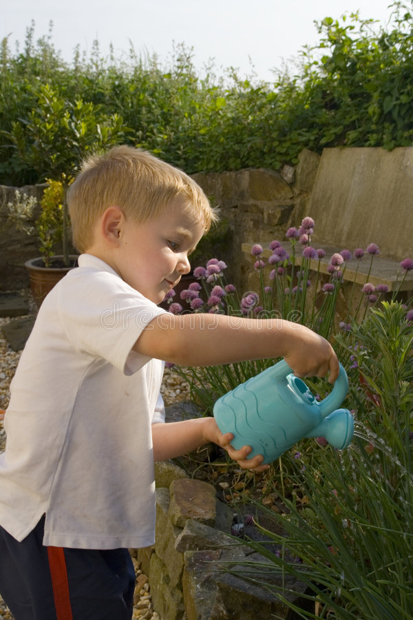 Young boy watering garden. stock photo