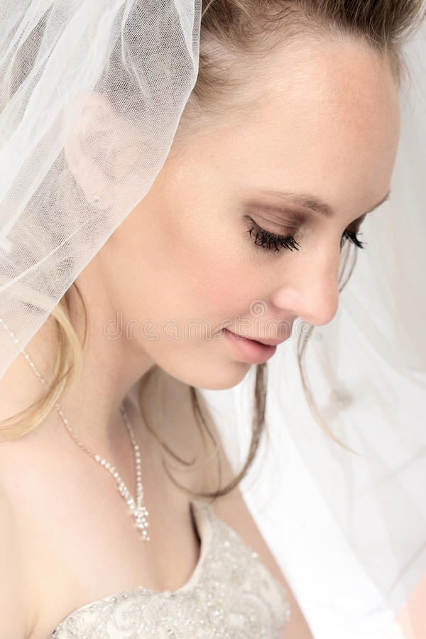 Download Young bride stock image. Image of wedding, attractive - 15736729