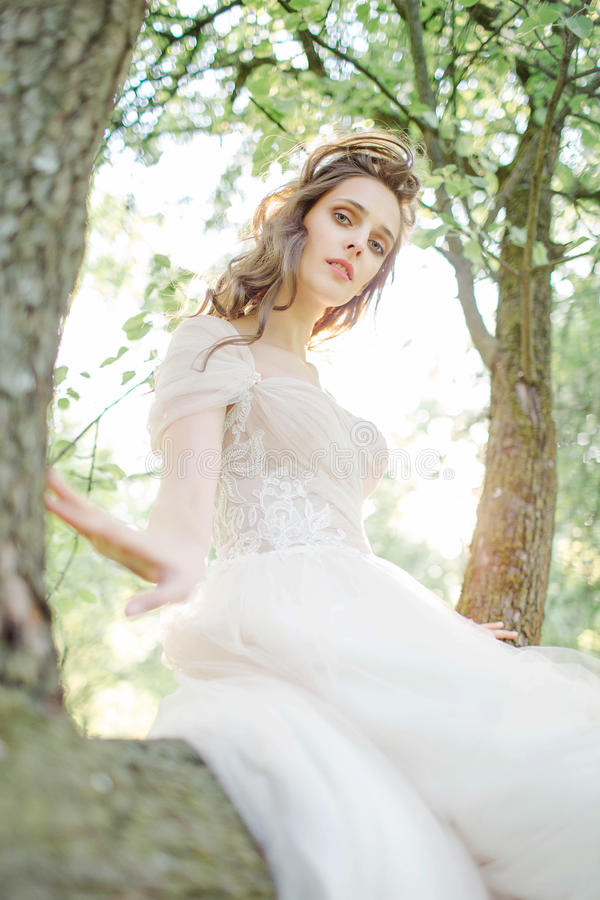 Young bride in beautiful wedding dress sitting on tree outdoors royalty free stock photos