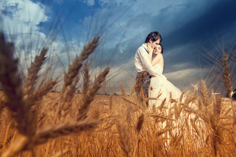 Young bride and groom in wheat field with blue sky. Young bride and groom in wheat field with blue dramatic sky and yellow crop ready to be harvest. Love and stock image
