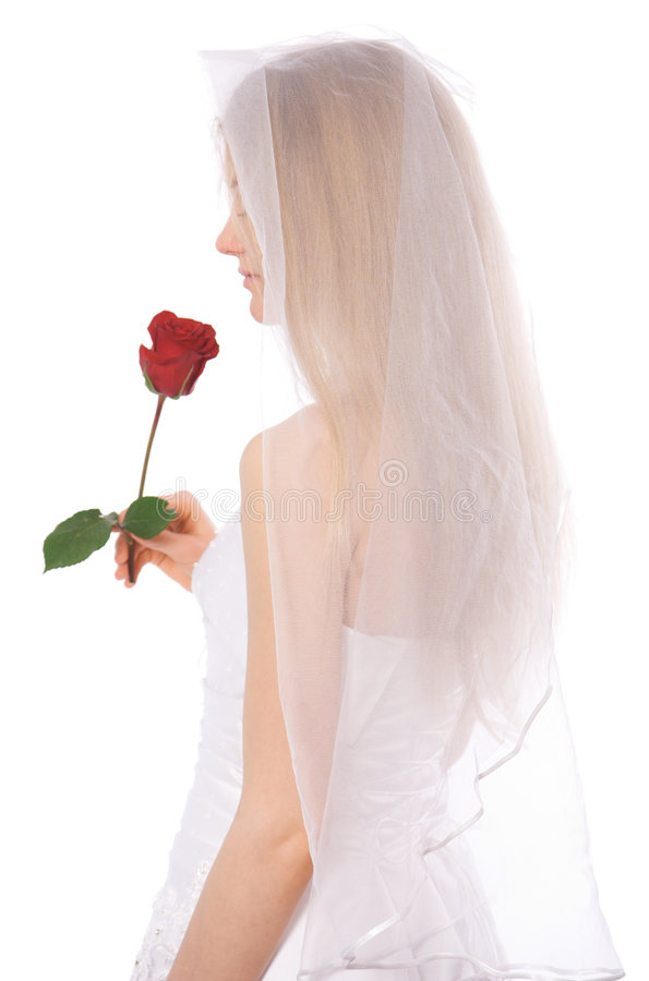 Free Young Bride With Rose Royalty Free Stock Photos - 4397718