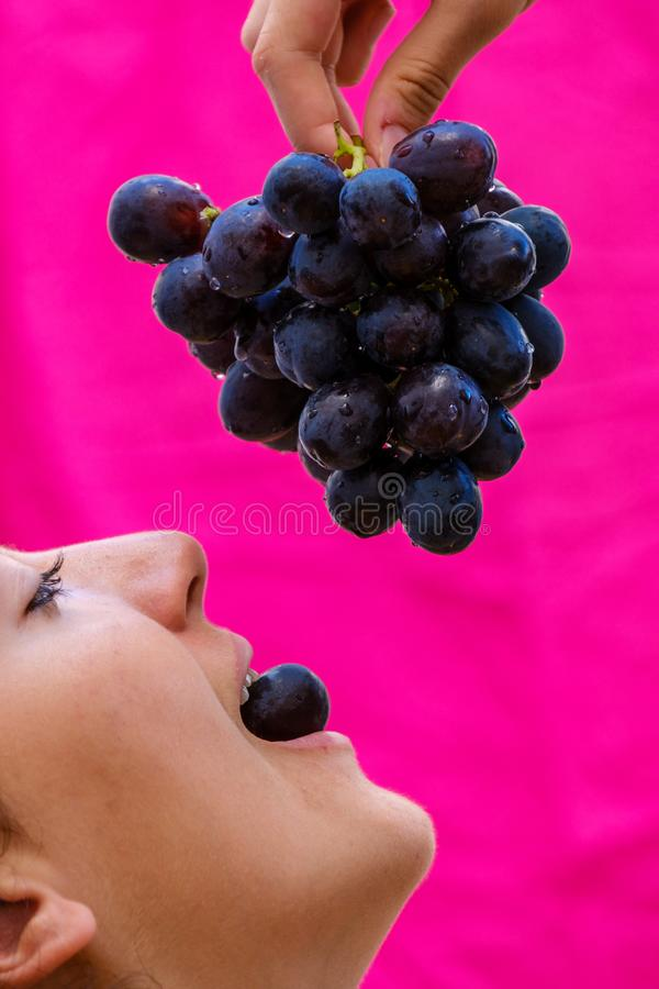 Young girl eats a black grape seed from a bunch of grapes royalty free stock photography