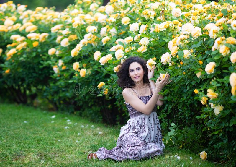Young brunette Caucasian woman with curly hair sitting on green grass near yellow roses Bush in a garden, looking straight to the stock photos