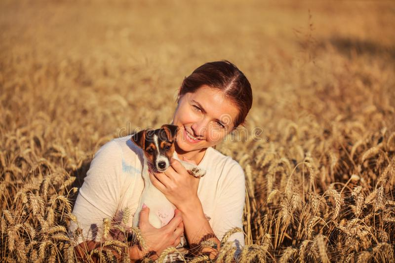 Young brunette woman holding Jack Russell terrier puppy on her hands, smiling, sunset lit wheat field behind her royalty free stock photo