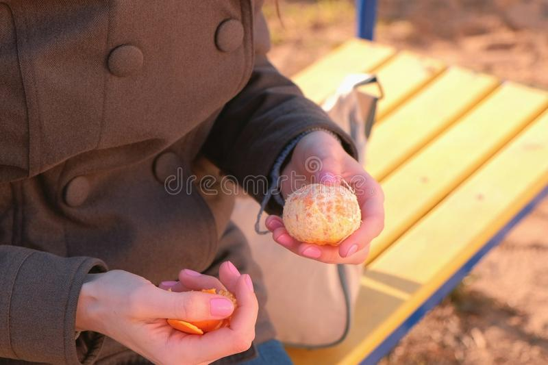 Young brunette woman in sunglasses peels tangerine sitting on the bench in park. Close-up hands. stock photography