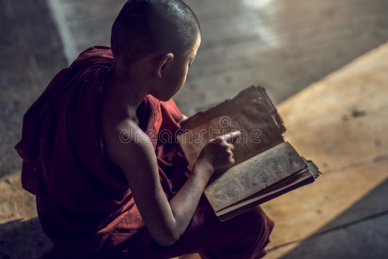 Young Buddhist novice monk reading and study royalty free stock photo