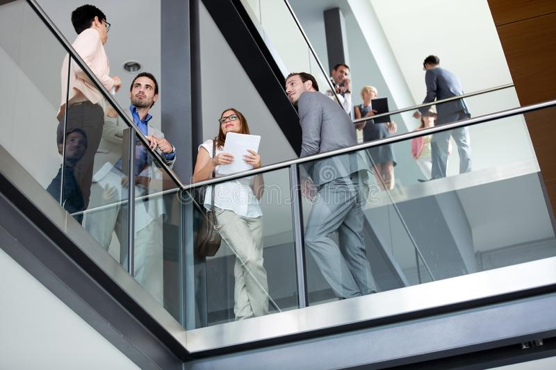 Young business people leisurely talk. In corridor royalty free stock image