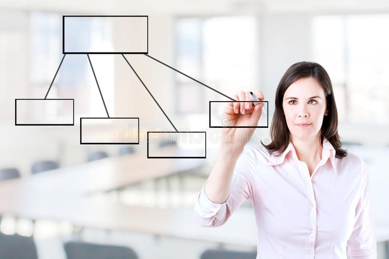 Young business woman drawing a flowchart. Young business woman drawing a flowchart 1. Office background stock photos
