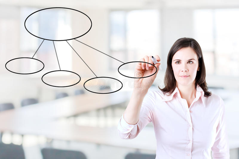 Young business woman drawing a flowchart. Young business woman drawing a flowchart 2. Office background stock photo