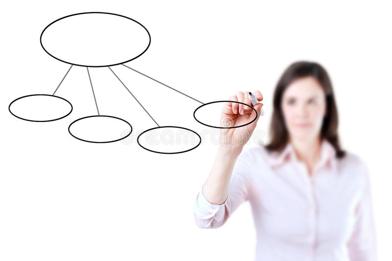 Young business woman drawing a flowchart. Young business woman drawing a flowchart 2, white background stock images