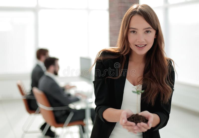 Young business woman holding a fresh sprout. The concept of a startup stock photo