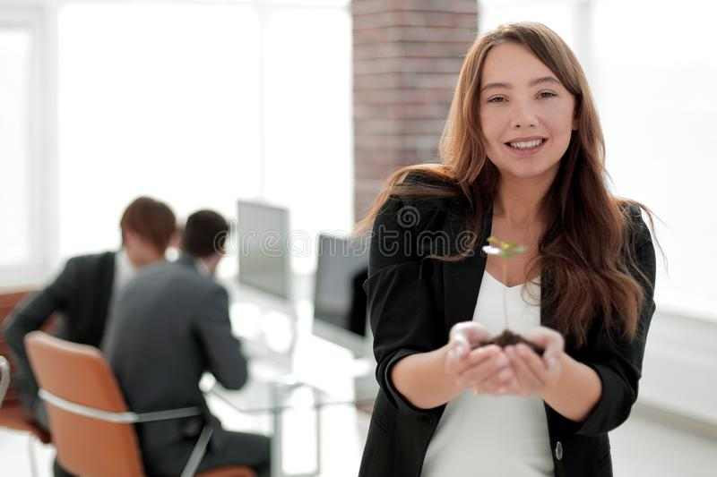 Young business woman holding a fresh sprout. The concept of a startup stock images