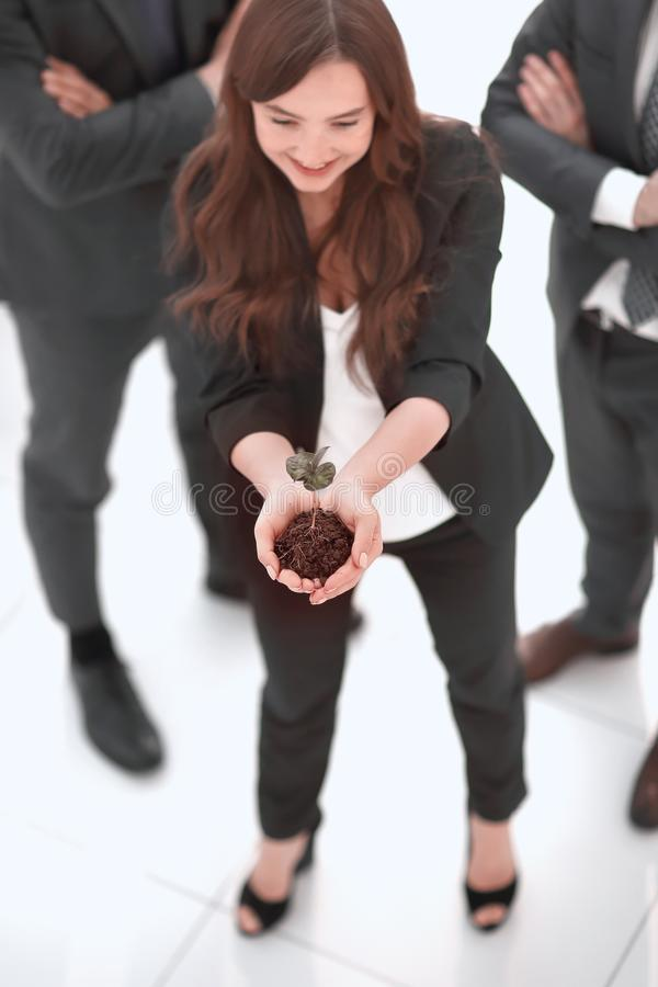 Young business woman showing fresh sprout. Eco-business concept stock images