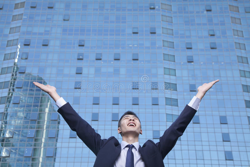 Download Young Businessman With Arms Raised Stock Image - Image: 33368345