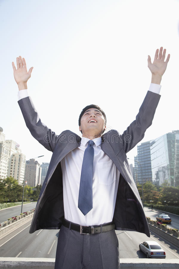 Download Young Businessman With Arms Raised Stock Image - Image: 33369995