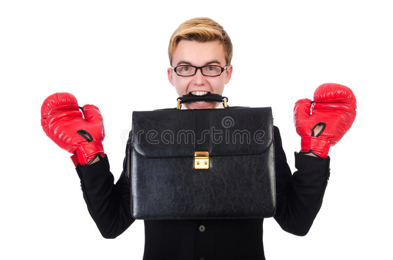 Young businessman boxer isolated royalty free stock photos