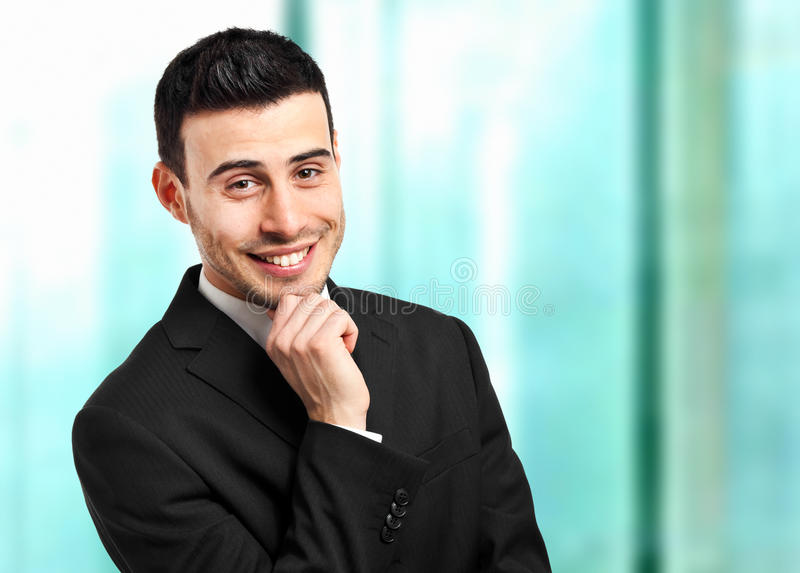 Download Young businessman portrait stock image. Image of cheerful - 28684671