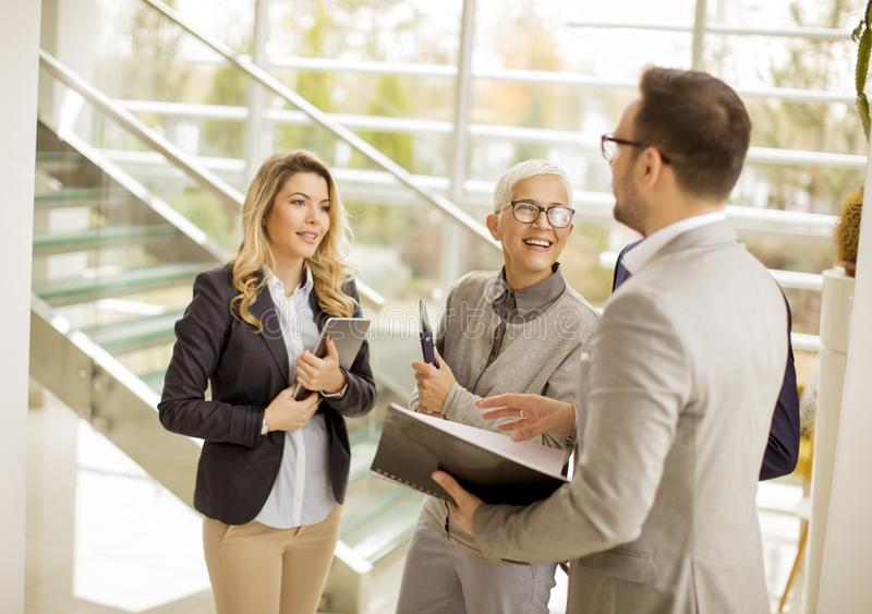 Young businessmen with senior and young businesswomen in office royalty free stock image